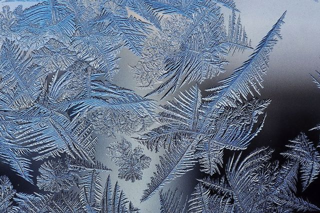 1200px-frost_patterns_2