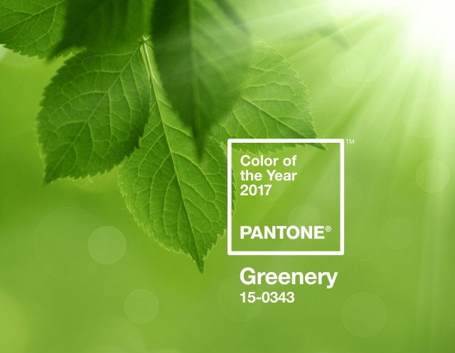 pantone-color-of-the-year-2017-greenery-15-0343-press-release.jpg